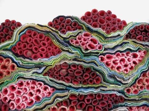 Crochet Queen : Crochet Queen Emily Barletta Handmade Charlotte