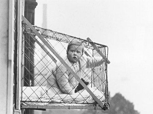 Brooklyn Babies Still Hang Out On The Window Ledge ⋆ Handmade Charlotte