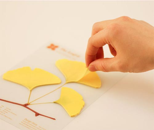 leaf-it ginko