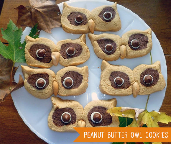 Peanut Butter Owl Cookies Tutorial