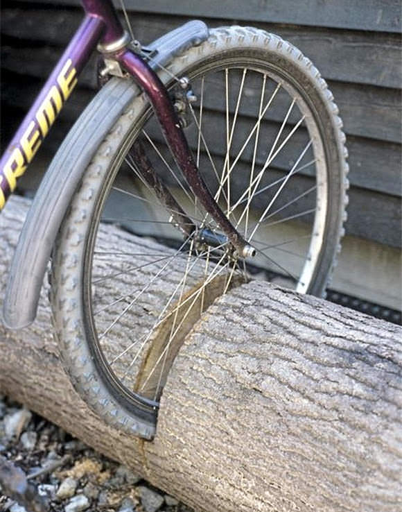 Repurpose a fallen tree into the ultimate bike stand!