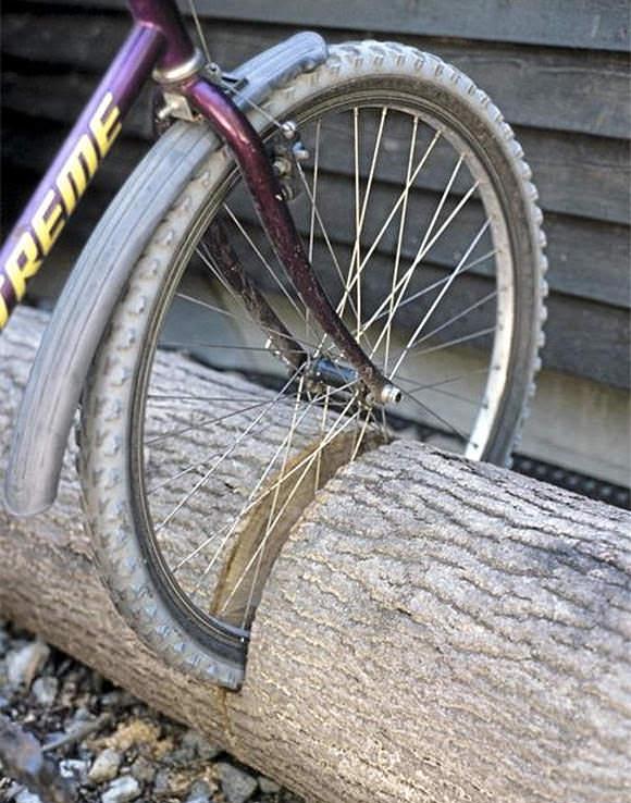 Repurpose a fallen tree into the ultimate bike stand!