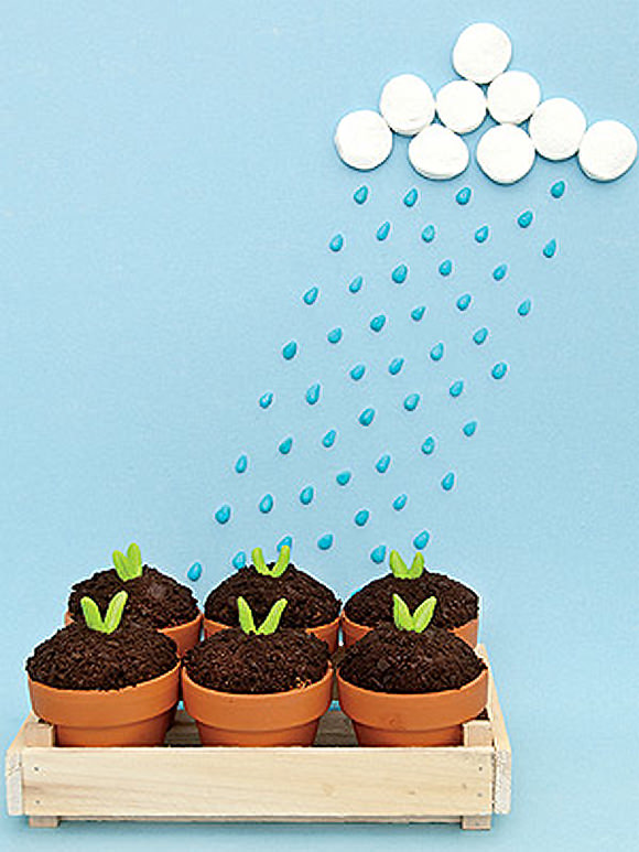 Sweet Seedlings via FamilyFun Magazine