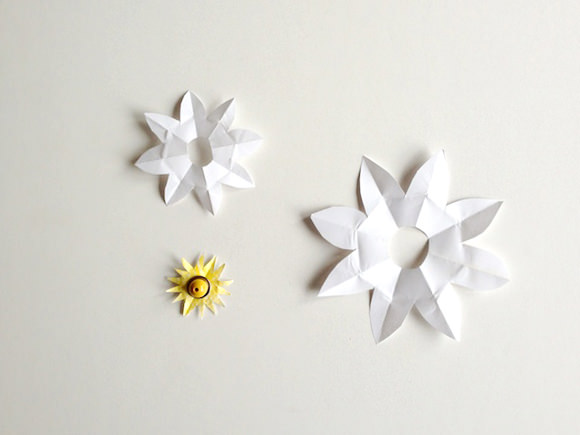Diy magic blooming paper lily handmade charlotte diy magic water lilies mightylinksfo