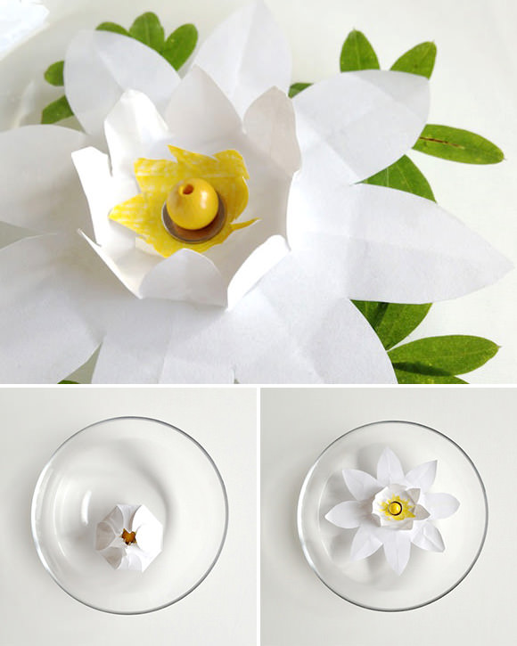 Diy magic blooming paper lily handmade charlotte drop this easy to make paper lily bud in a bowl of water and mightylinksfo