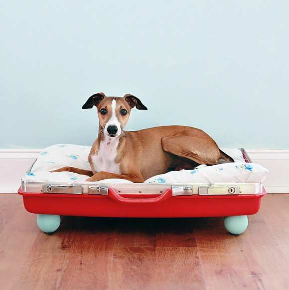 DIY Recycled Suitcase Dog Bed