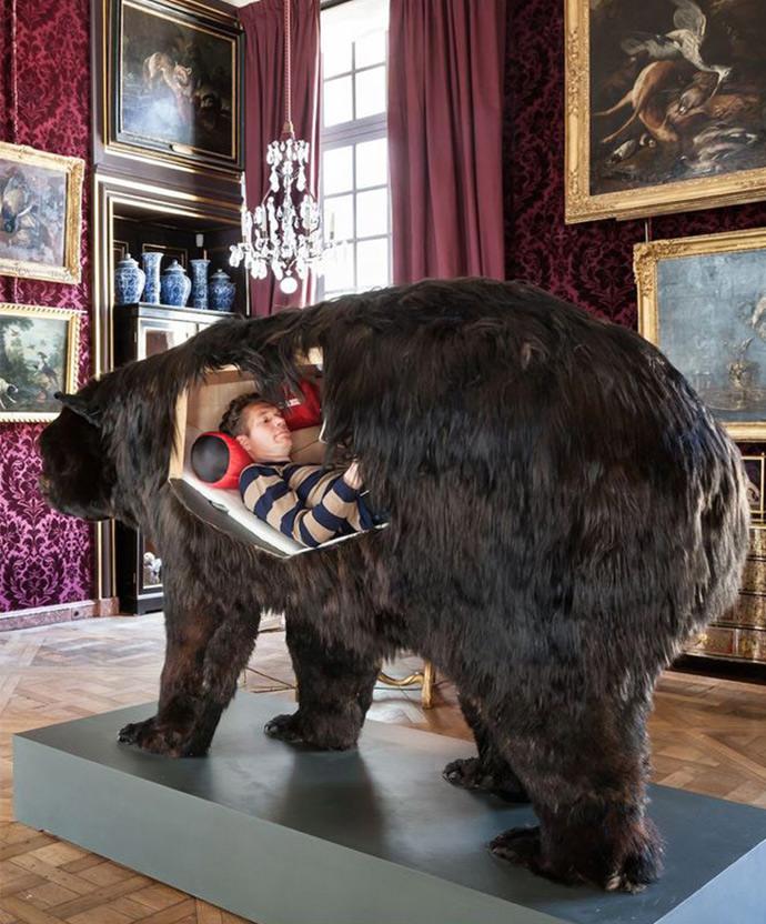 Black Bear Mount Ideas Related Keywords u0026 Suggestions ...