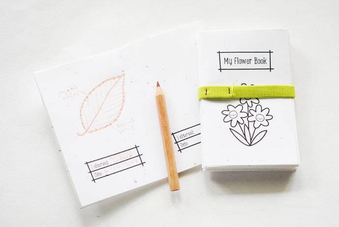 DIY Printable Observation Books