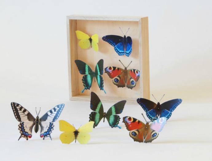 Paperwolf's Butterfly Art