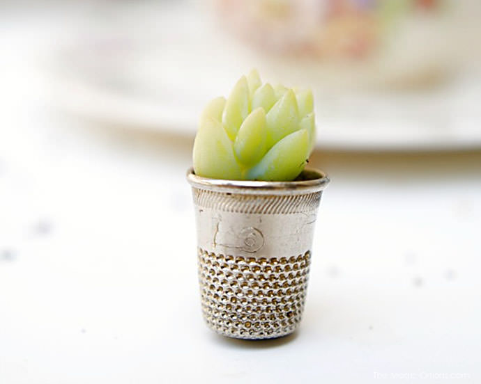 DIY Mini Potted Plant via the magic onions