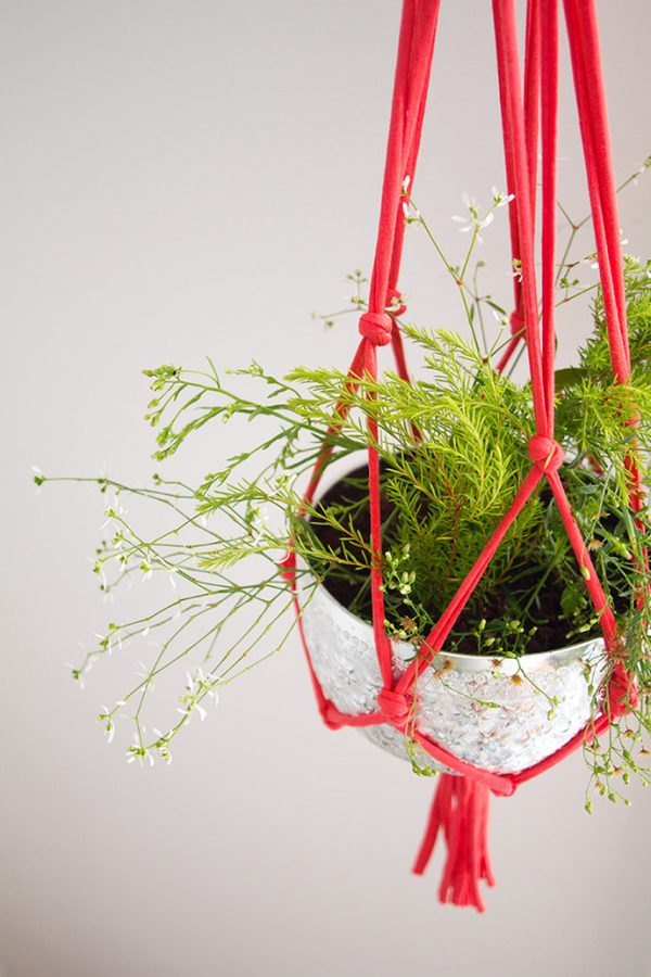 DIY Hanging String Plant Holder
