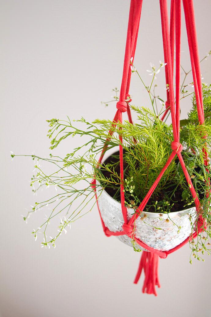 DIY Hanging String Plant Holder