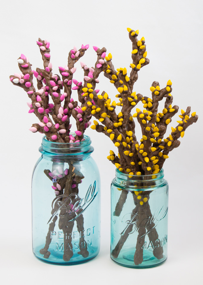 Simple Sweet & Salty Spring Branches