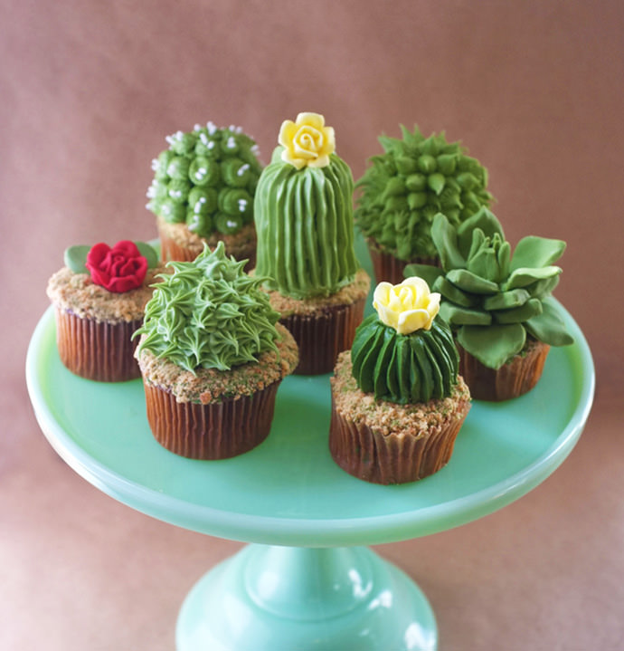 Cactus and Succulent Cupcake Recipe