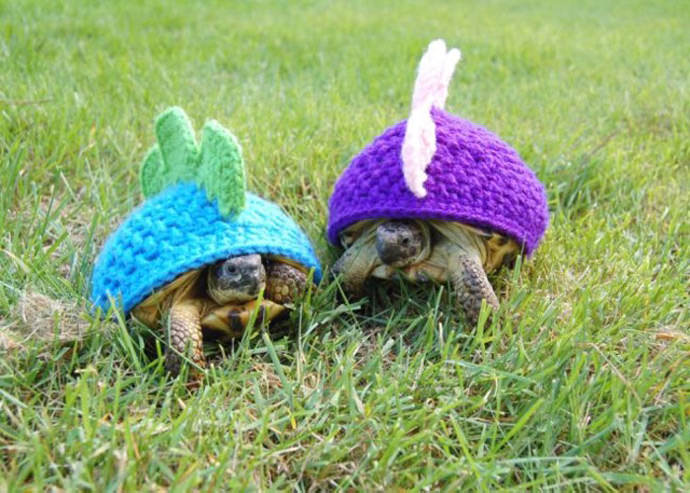 DIY Crochet Dinosaur Turtle Sweaters