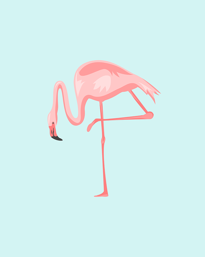 Flamingo Printables by Oh So Lovely