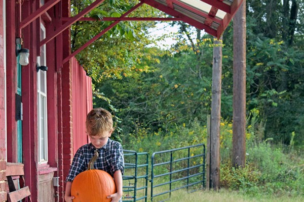 Traveling to the pumpkin patch with my 5-year-old