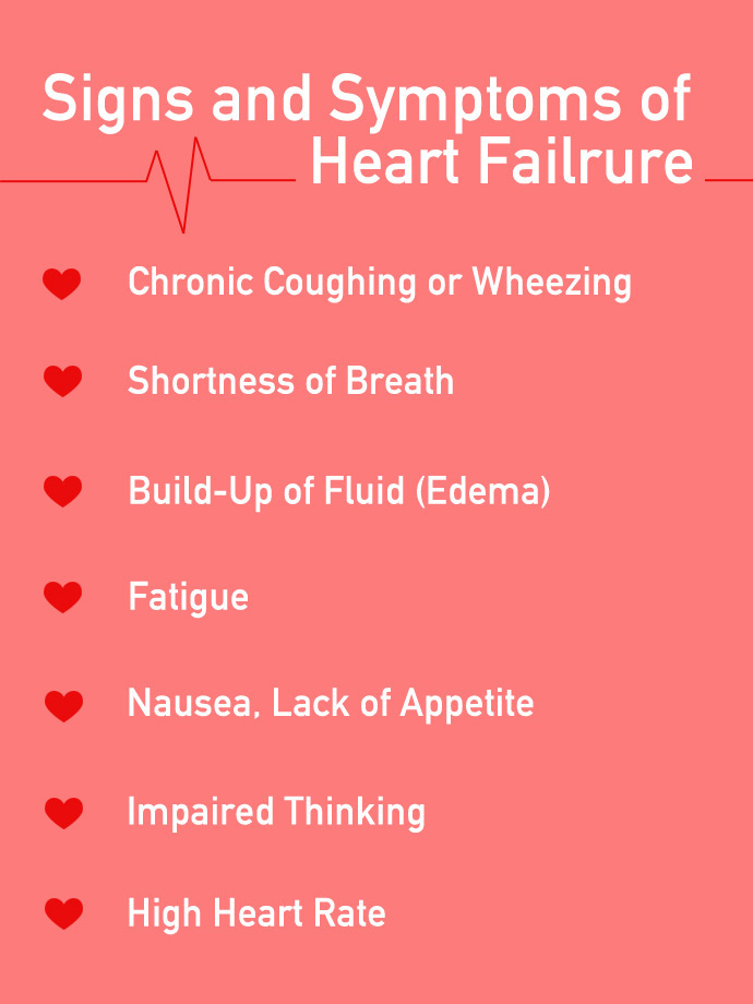 """American Heart """"Heartie"""""""