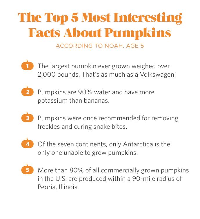 http://media3.handmadecharlotte.com/wp-content/uploads/2015/10/pumpkin-facts2.png