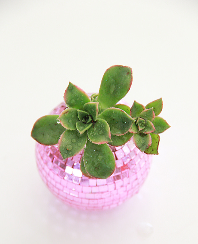 Disco Ball Planter, tutorial via A Bubbly Life