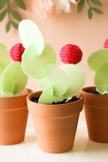 DIY Edible Cactus Treat