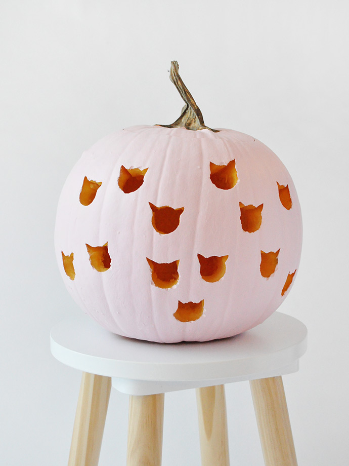 DIY Cat Drilled Pumpkins