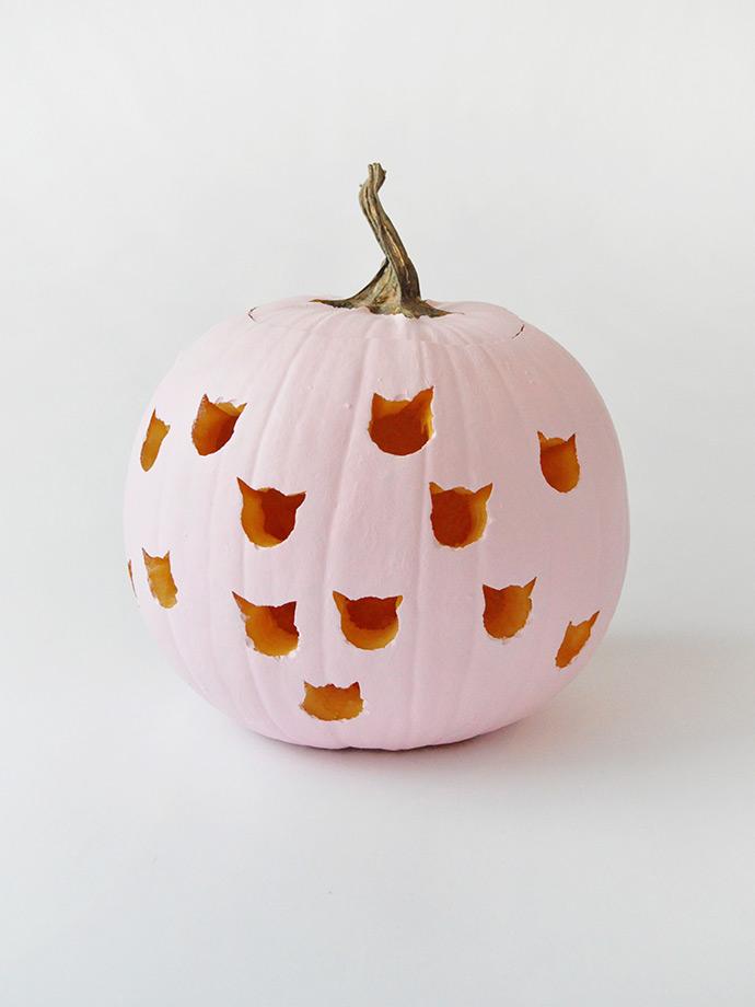 DIY Cat Drilled Pumpkins
