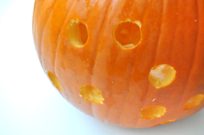 DIY Cat Drilled Pumpkins.... : Handmade Charlotte - howlDb