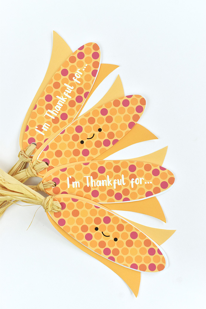 Harvest Corn Gratitude Books