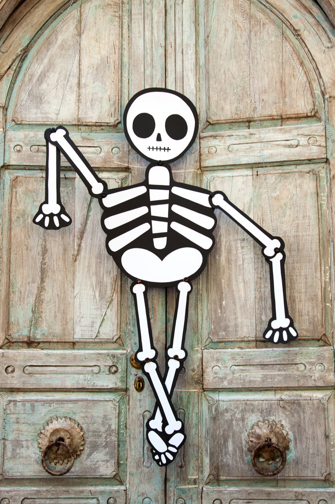 Celebrate Halloween with Skeletons